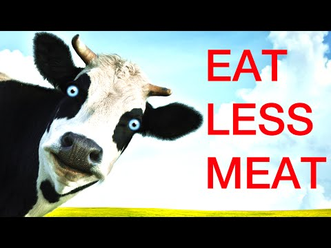 Fight Climate Change, Eat Less Meat
