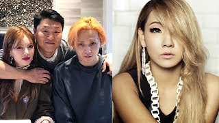 Psy's Crazy New Signings and Future