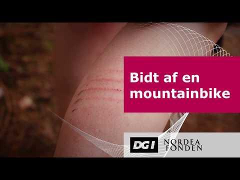 Kend en mountainbike-pige på stængerne - kvindetræning i DMK, Hareskoven - DGI