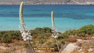 Theodorakis-Bithikotsis: Denial - Άρνηση !