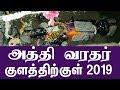 அத்தி வரதர் குளத்திற்குள் 2019 | Last Day Athi Varadar Video Photo Athi Varadar Darisanam