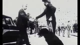 Звістун художнього фільму 1998р -  Сьомий маршрут /Ua