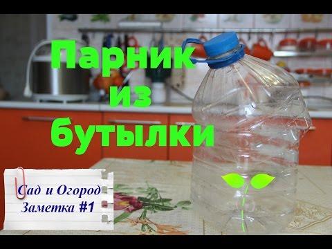 видео: Парник из пластиковой бутылки. Лайфхак от Юли.