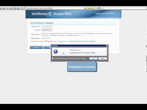 WebMoney Keeper Mini  Покупка цифровых товаров Часть 9