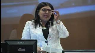 Sesión 494 del Pleno (10-01-2018)