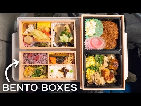 JAPANESE LUNCH BOX on Shinkansen Bullet Train