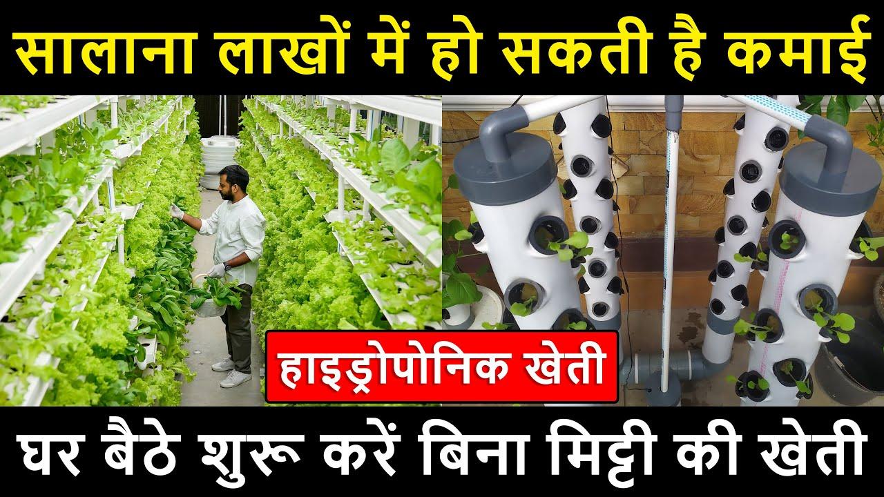 घर बैठे शुरू करें बिना मिट्टी की खेती | हाइड्रोपोनिक खेती | सालाना लाखों में हो सकती है कमाई