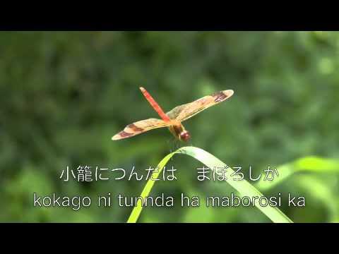 赤とんぼ  由紀さおり 安田祥子 歌詞付き 童謡