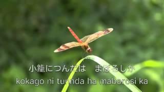作曲:山田耕筰 作詞:三木露風 歌 :由紀さおり 安田祥子.