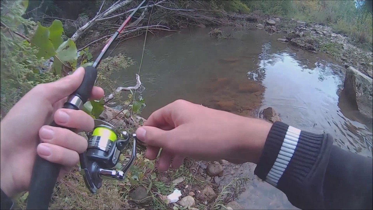 Les sondes acoustiques pour la pêche khamminberd 170