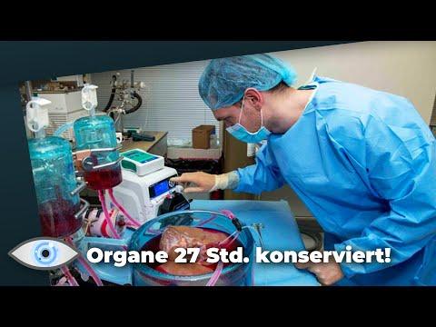 """""""Supercooling"""": Menschliche Spenderorgane 27 Stunden lang konserviert!"""