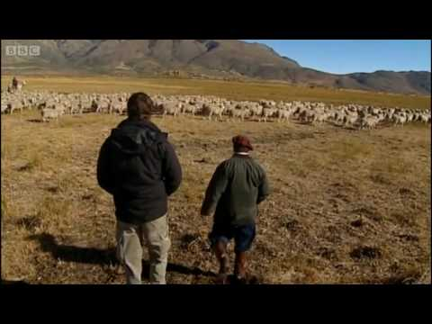 Argentina's biggest farm - Explore - BBC