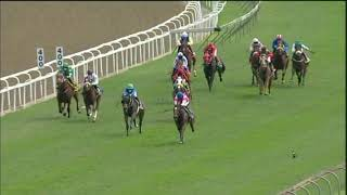 Vidéo de la course PMU PRIX DOWNLOAD THE TABGOLD INFORMATION APP MAIDEN PLATE