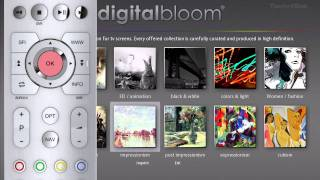 digitalbloom
