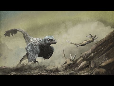 Deinonychus - The Fast and Furious