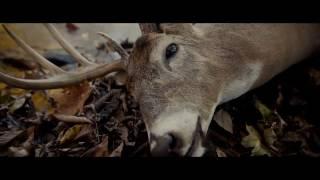 Фильм Сплит (2017) в HD смотреть трейлер