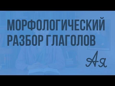 Морфологический разбор глаголов. Видеоурок по русскому языку 7 класс
