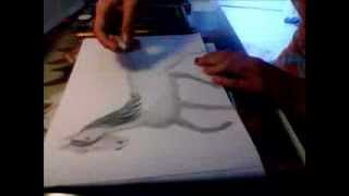 Drawing a horse in gallop