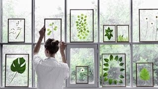 DIY: Pressed & Framed Wedding Plants