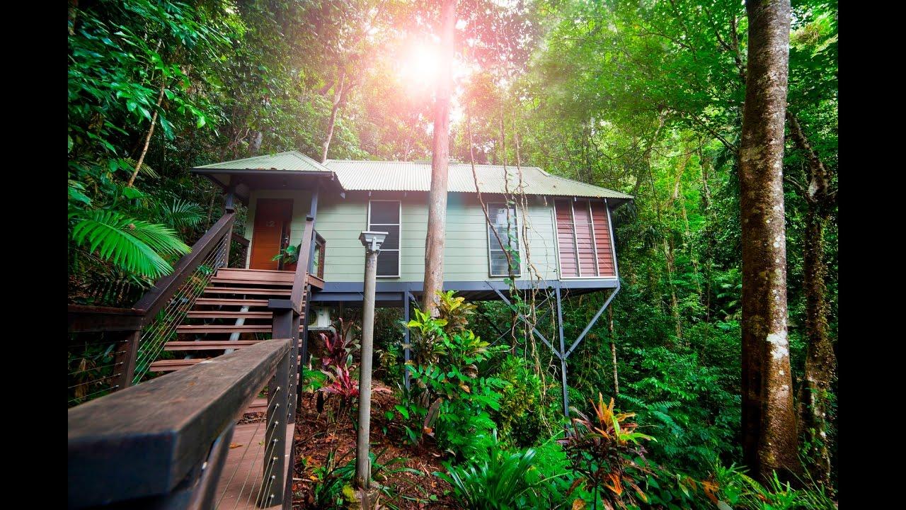 Daintree Eco Lodge Canopy Bayan & Daintree Eco Lodge Canopy Bayan - YouTube