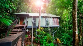 Daintree Eco Lodge, Canopy Bayan