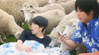 Google アプリ:サマーチャレンジ #絶対寝れる動画 thumbnail