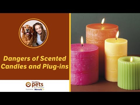 Dr. Becker Discusses the Dangers of Scented Candles and Plug-ins