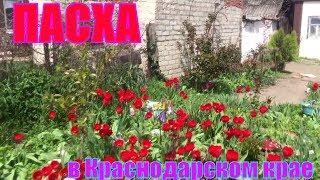 Цветы! Море цветов//ПАСХА и наше ПУТЕШЕСТВИЕ! опять Краснодарский край! / Видео