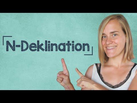 German Lesson (179) - N-Deklination - A2