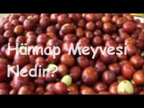 Hünnap Meyvesi Nedir Youtube