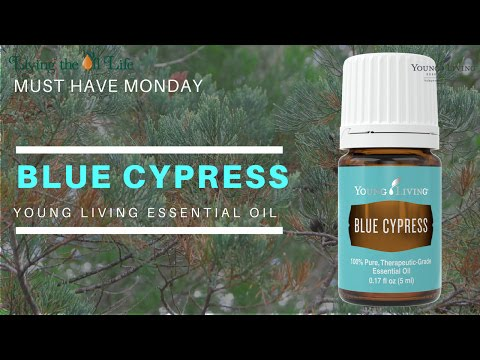 Blue Cypress Oil from Australia is Our Must Have Monday