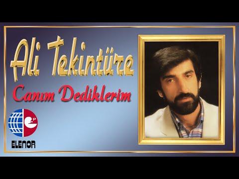 ALİ TEKİNTÜRE feat ADNAN TAYFUN - AKLI YOK indir