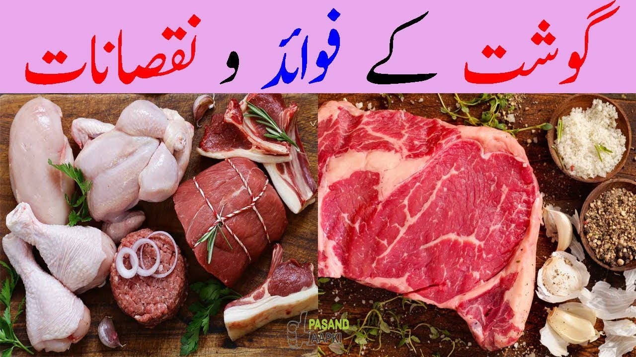 beef : cow : goat : meat of full information in urdu with Dr Khurram:Pasand Aapki