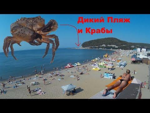 Джубга Обзор Пляжей Цены. Ловля Крабов Дикий Пляж Джубги Сентябрь +40°С. АвтоСтоп Чёрное море 1 с