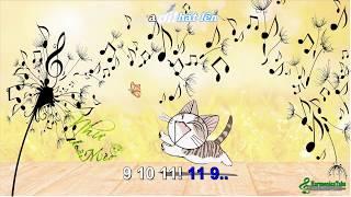 Như Loài Mèo (Tremolo Study) - HarmonicaTabs