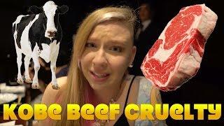 Simon & Martina: Stop Eating Cows You Love!