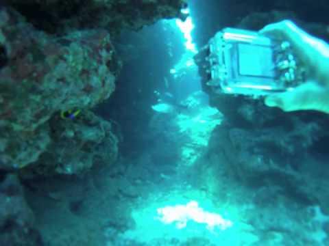 Grand Cayman Dive Oro Verde & Eden Rock.m4v