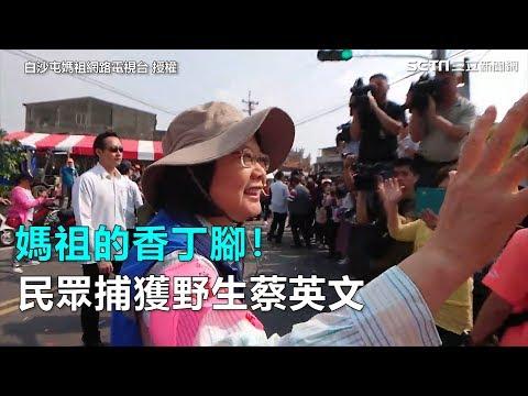 媽祖的香丁腳!民眾捕獲野生蔡英文|三立新聞網SETN.com