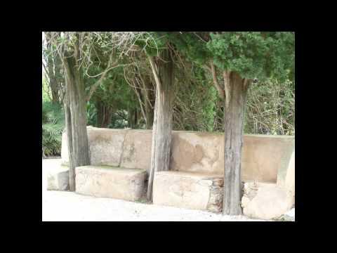 grobe Steinbänke zwischen Bäumen