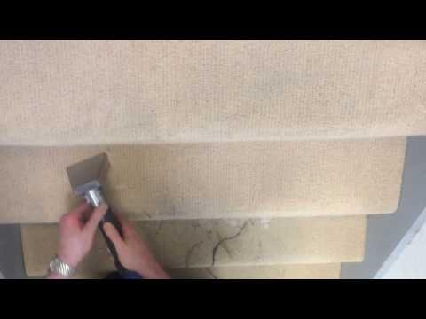 Carpet Cleaning Services Dublin - Ireland - AquaDry