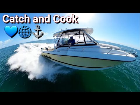 Catch And Cook In Miami Island