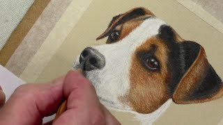 Draw a Jack Russell | Pastel Pencils