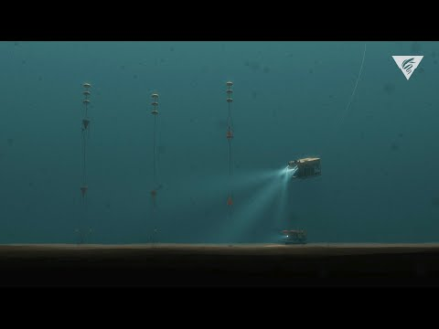 Robots in the Abyss: 30 years of research on the abyssal plain provides clues to climate change