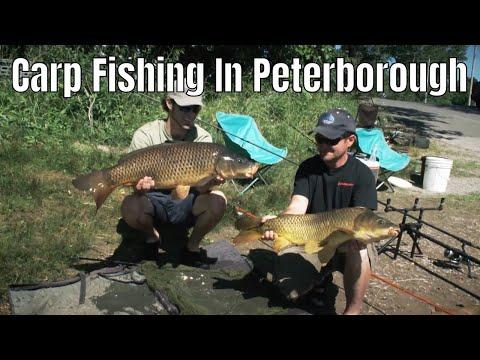 Carp Fishing In Peterborough, Ontario | Fish'n Canada