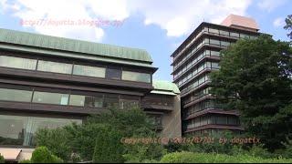 Japan Trip 2014 Tokyo Mejiro Hotel Chinzan-sō Garden Koi(carp) & Argynnis hyperbius(butterfly)02