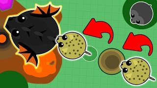 TROLLING BLACK DRAGONS IN MOPE.IO WITH CHEETAH! FUNNY MOMENTS IN MOPE.IO! (Mope.io New Update)