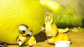 LARVA - CHICK 1 | Cartoon Movie | Cartoons For Children | Larva Cartoon | LARVA Official