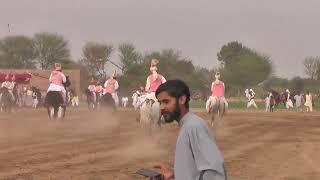 Jashn e Khayalika Shaheen neza bazi mela part 7 ,7 3 2021