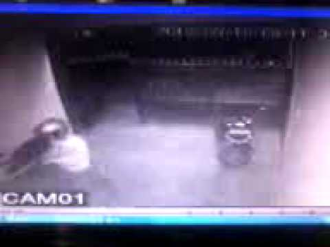 Video maling motor terekam kamera cctv.mp4 Travel Video