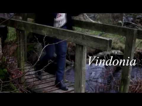 Vindonia New Album 2018 - Trad music from Scandinavia
